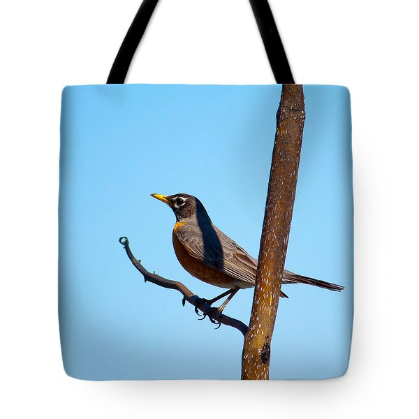 Robin Taking A Break Tote Bag