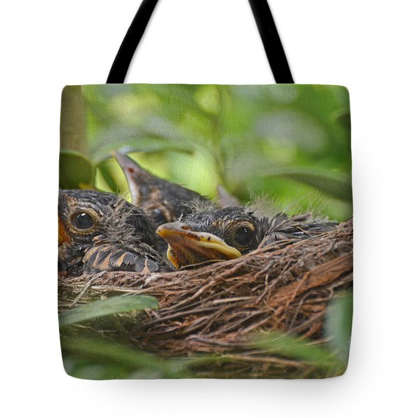 Robins In The Nest Tote Bag