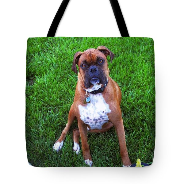 Tote Bag featuring the photograph Rocco by Philomena Zito