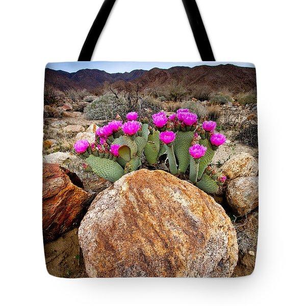 Rock And Beavertail Tote Bag