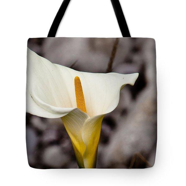 Rock Calla Lily Tote Bag by Melinda Ledsome