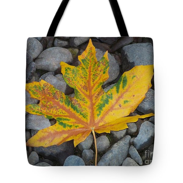 Tote Bag featuring the photograph Rock Creek Leaf by Chalet Roome-Rigdon
