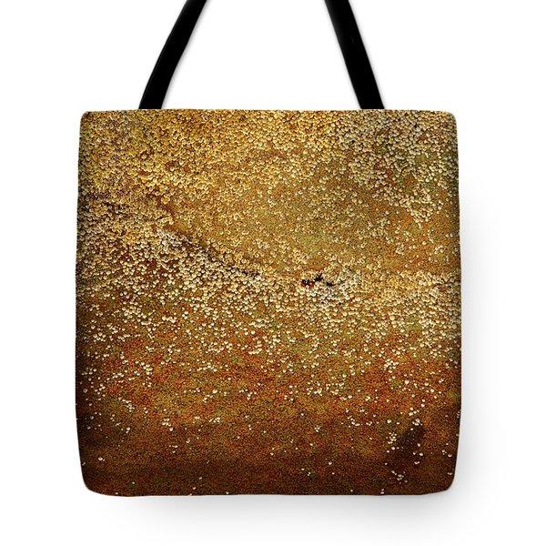 Rock Face - Seaside Abstract Tote Bag by Aidan Moran