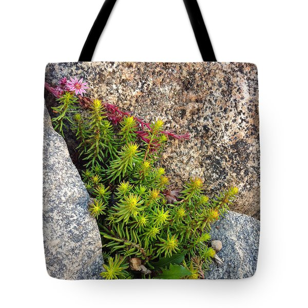 Tote Bag featuring the photograph Rock Flower by Meghan at FireBonnet Art