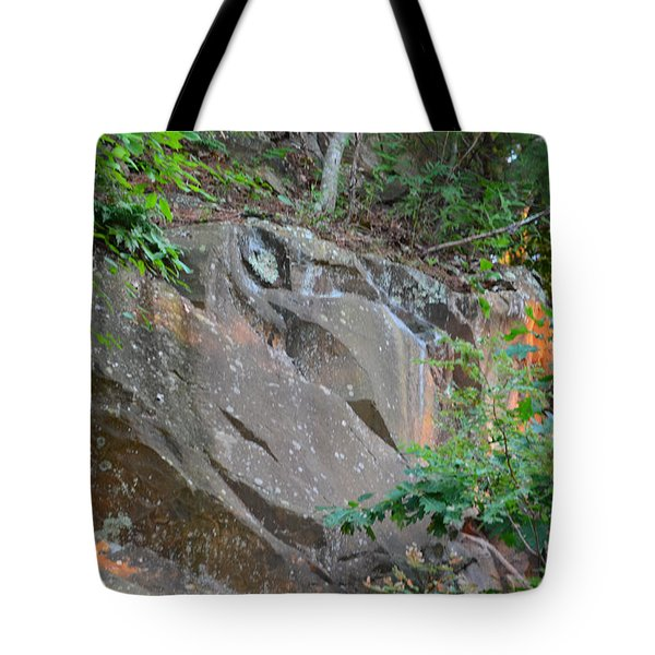 Rock On Hokie Bird Tote Bag by Cathy Shiflett