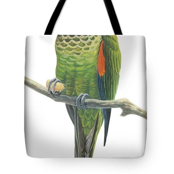Rock Parakeet Tote Bag by Anonymous