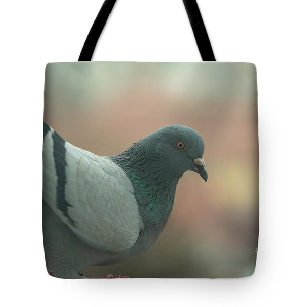 Rock Pigeon Tote Bag