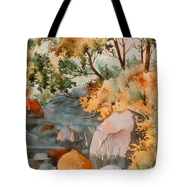 Rock Reflections Tote Bag by Teresa Ascone