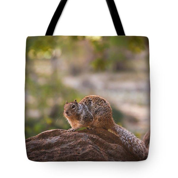 Rock Squirrel In Zion Tote Bag by Robert Bales
