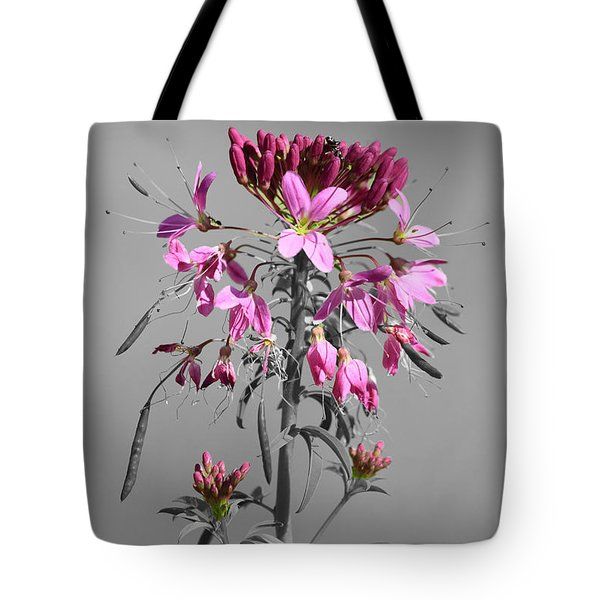 Rocky Mountain Bee Plant Sc Tote Bag