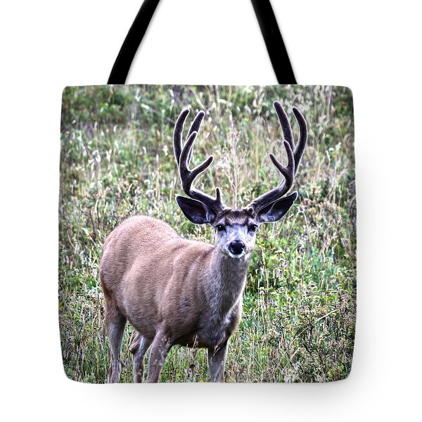 Rocky Mountain Buck Tote Bag