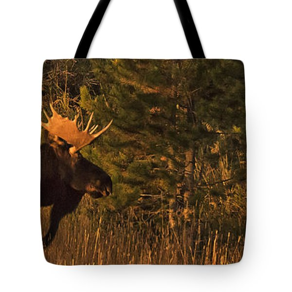 Rocky Mountain National Park Moose Tote Bag