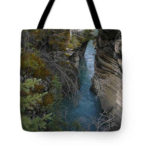 Rocky Mountain Wonder Tote Bag