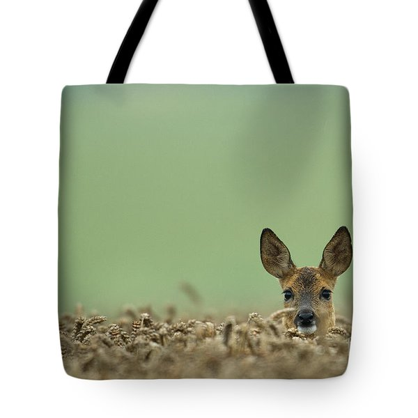 Roe Deer In A Field Tote Bag