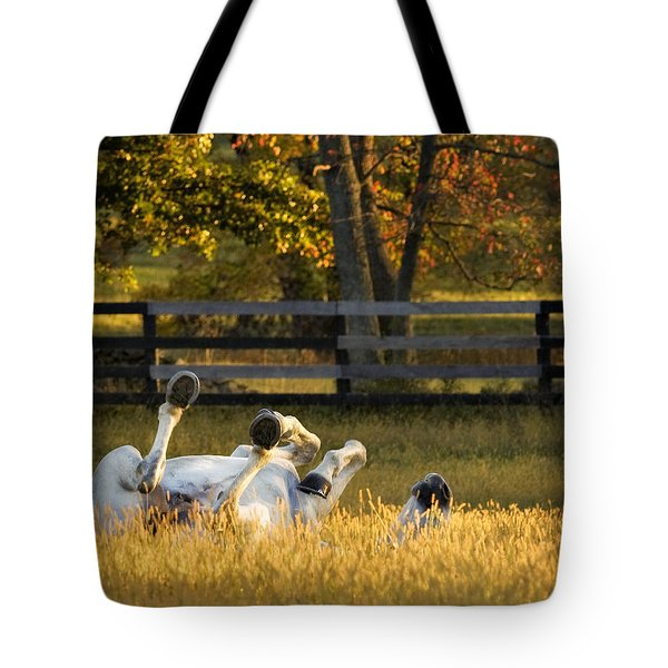 Roll In The Hay Tote Bag by Joan Davis
