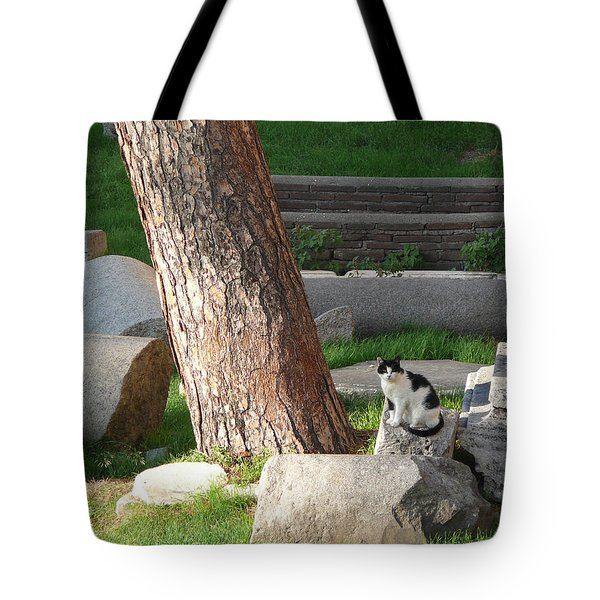 Tote Bag featuring the photograph Roman Beauty by Evelyn Tambour