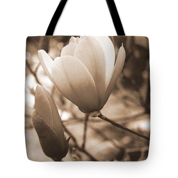 Romantic Vintage Magnolia Tote Bag by Kay Novy