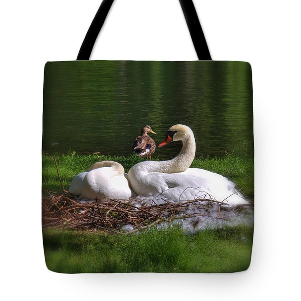 Romeo And Juliet In Boston Tote Bag by Joann Vitali