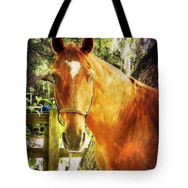 Tote Bag featuring the photograph Romeo by Judy Hall-Folde