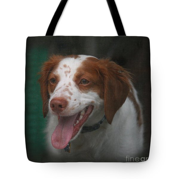 Rooney At The Back Door Tote Bag