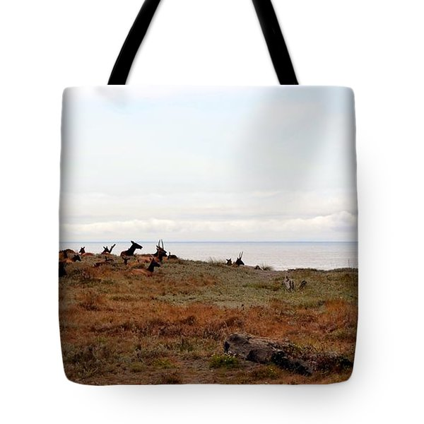 Roosevelt Elk And The Ocean Tote Bag