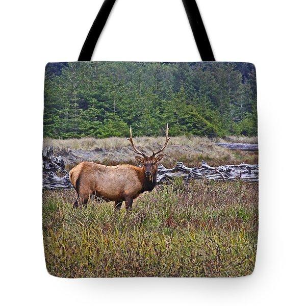 Roosevelt Elk Tote Bag by Mark Alder