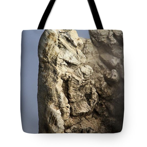 Roosevelt Geyser Tote Bag by Adam Jewell