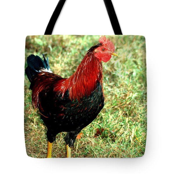 Tote Bag featuring the photograph Rooster Red by Lesa Fine