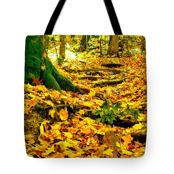 Root Steps Tote Bag
