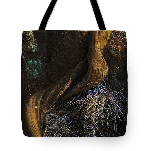 Tree Root Tote Bag