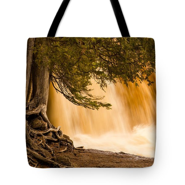 Rooted In Spring Tote Bag