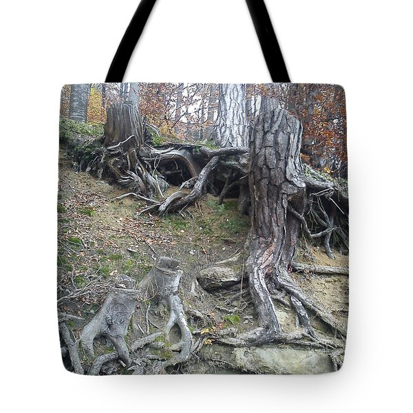 Tote Bag featuring the painting Roots by Felicia Tica