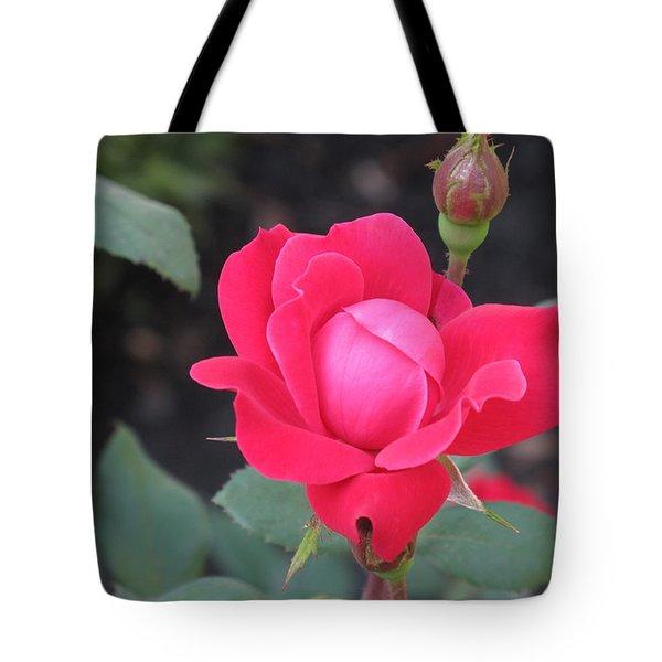 Ro's Last Rose Of Summer Tote Bag