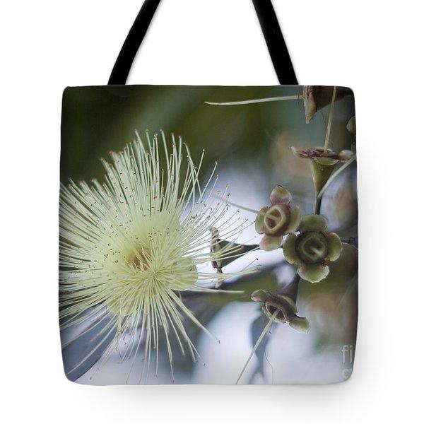 Rose Apple Blossom Tote Bag