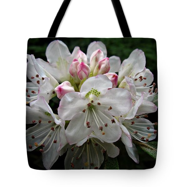 Rose Bay Rhododendron Tote Bag