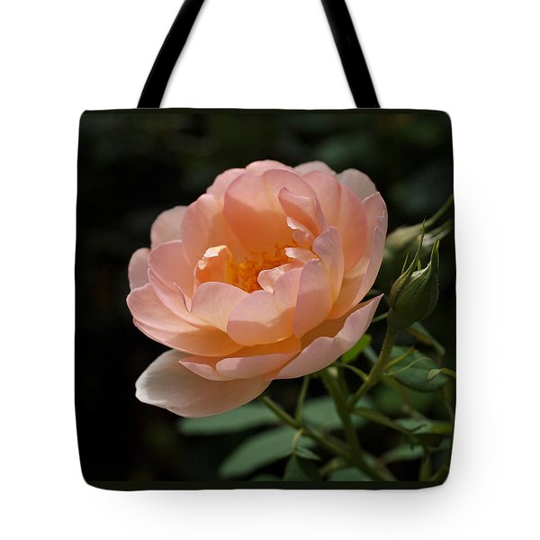 Rose Blush Tote Bag by Rona Black