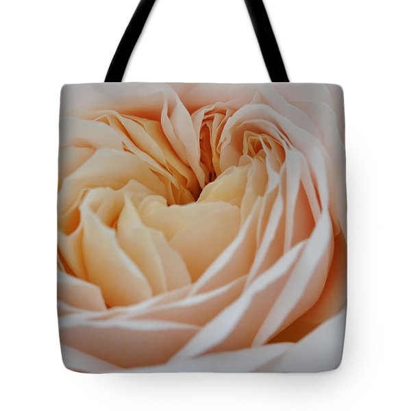 Tote Bag featuring the photograph Rose Blush by Sabine Edrissi