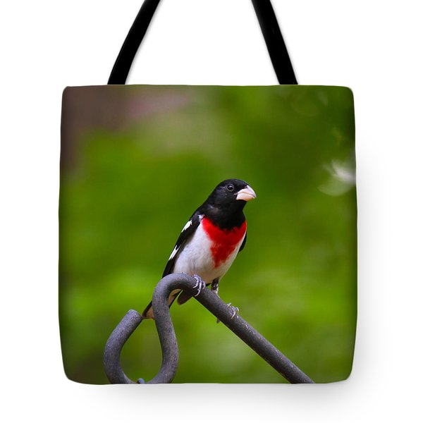 Rose Breasted Grosbeak Tote Bag by Robert L Jackson