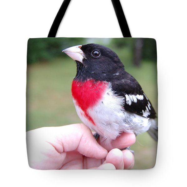 Tote Bag featuring the photograph Rose Breasted by Mim White