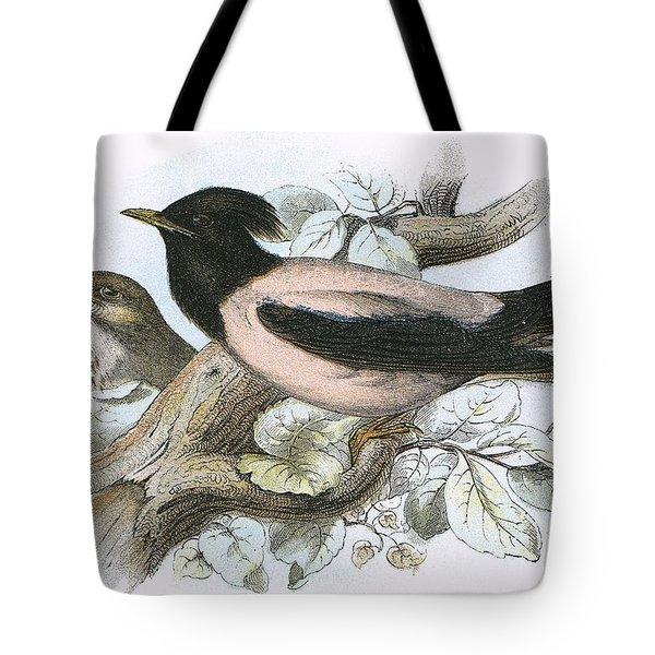 Rose Coloured Starling Tote Bag