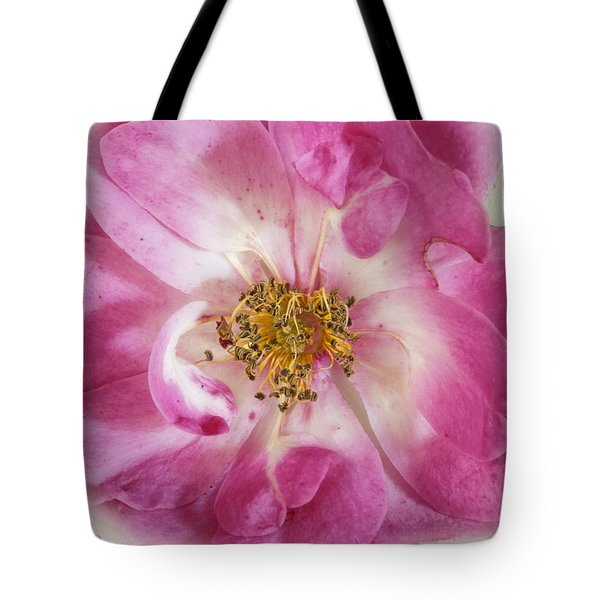 Tote Bag featuring the photograph Rose by Elaine Teague