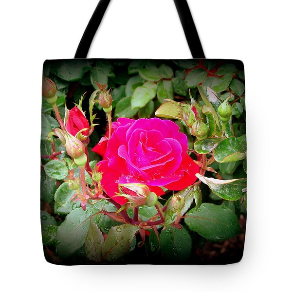 Rose Garden Centerpiece Tote Bag