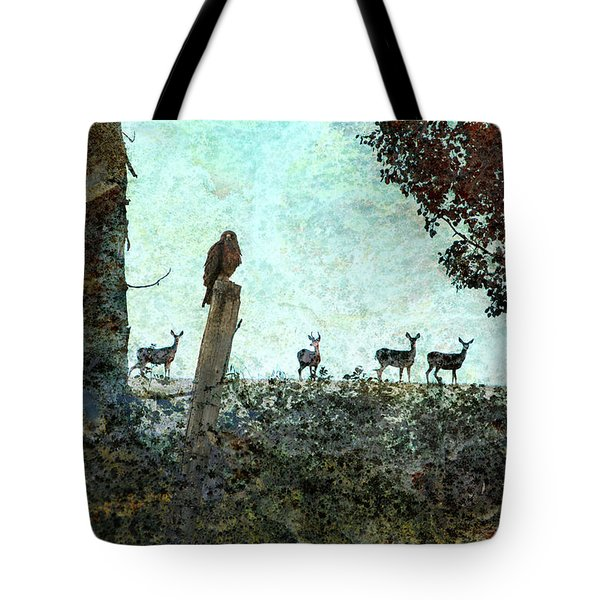 Rose Hill - Autumn Tote Bag by Ed Hall