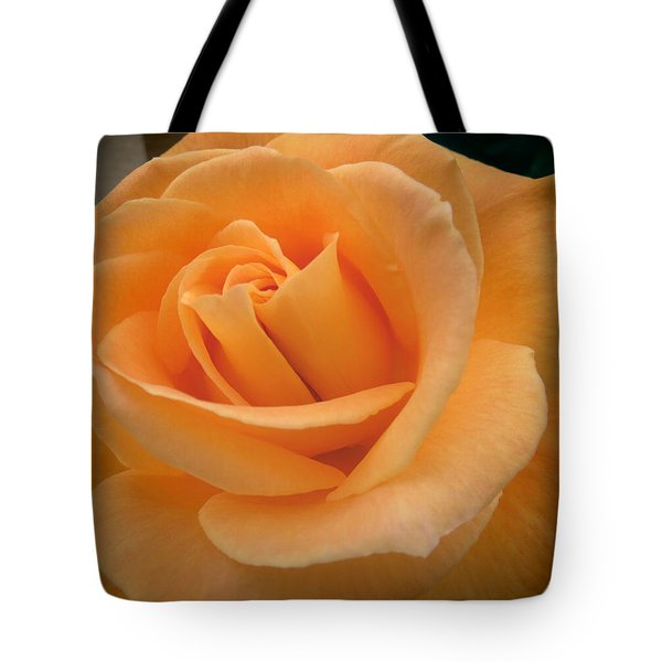 Tote Bag featuring the photograph Rose by Laurel Powell