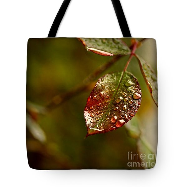 Tote Bag featuring the photograph Rose Leaf by Liz  Alderdice