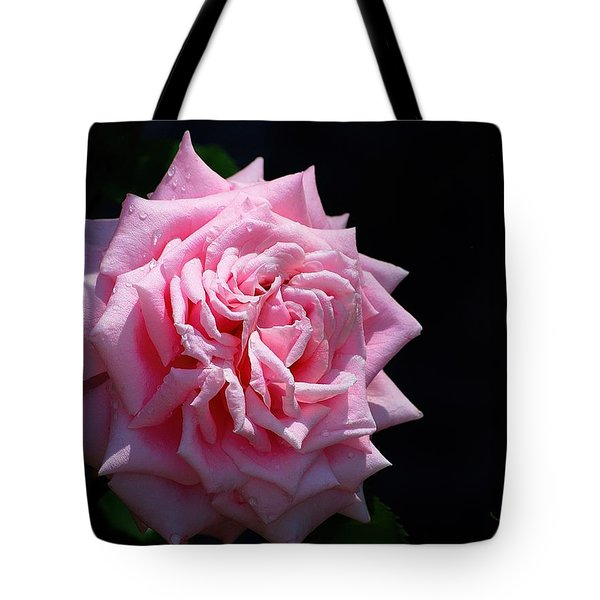 Tote Bag featuring the photograph Rose by Ludwig Keck
