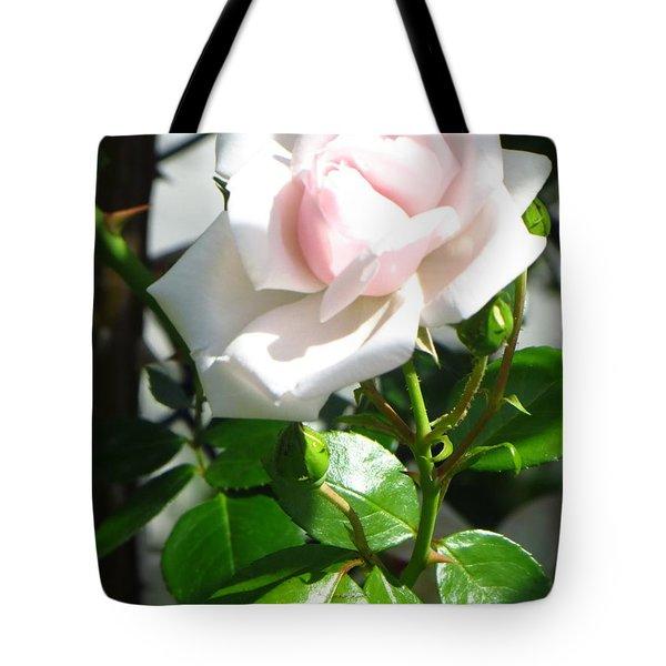 Rose Named Pearl Tote Bag by Sonali Gangane