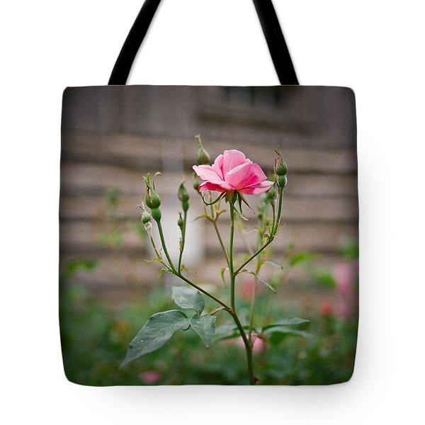 Rose Of Independence Tote Bag by Linda Unger