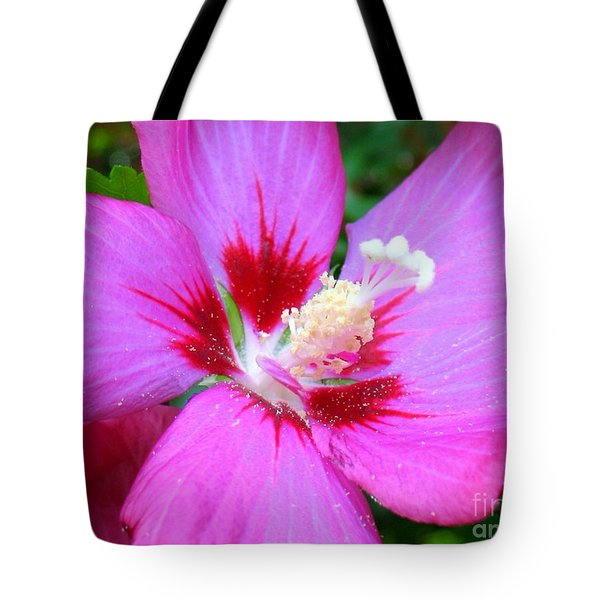 Rose Of Sharon Hibiscus Tote Bag by Patti Whitten