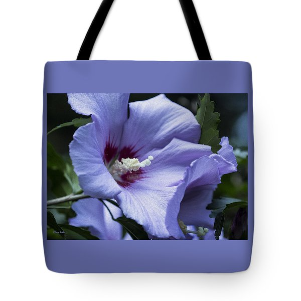 Rose Of Sharon Tote Bag by Rebecca Samler